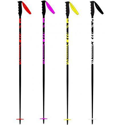 baton de ski