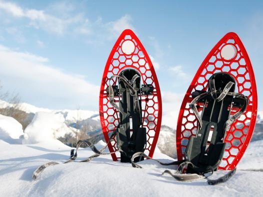 raquettes à neige