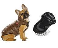 accesoir pour chien