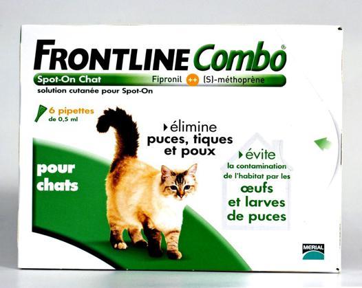 anti tique chat efficace