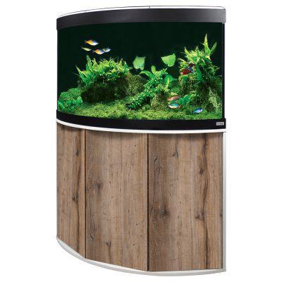 aquarium d angle