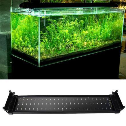 aquarium led