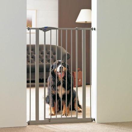 barriere porte chien