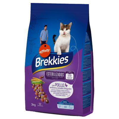 brekkies chat