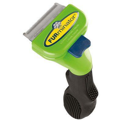 brosse chien poil ras