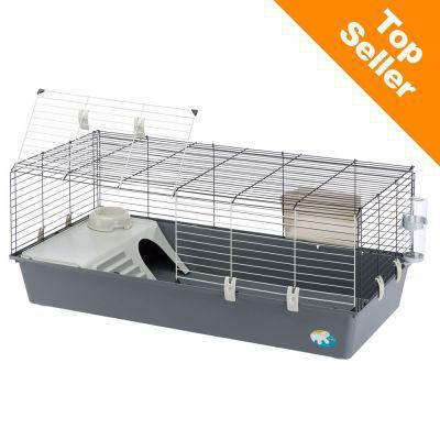 cage pour cochon d inde
