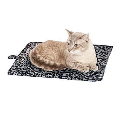 cat mat
