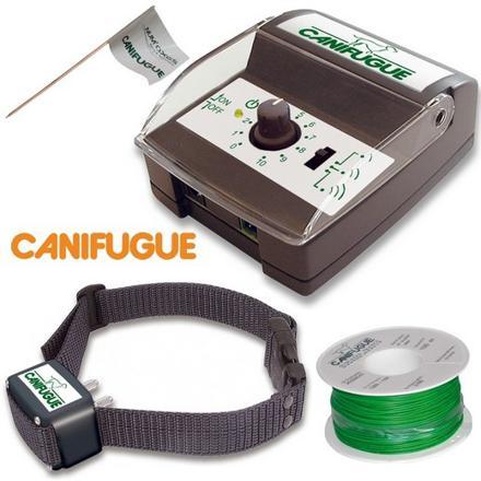 collier électrique chien anti fugue