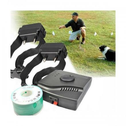 collier electrique chien cloture