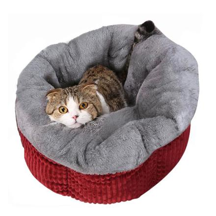 couchage pour chat