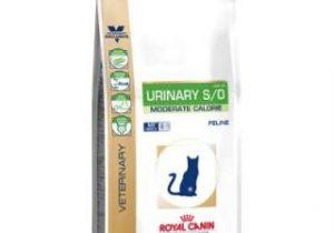 croquette chat royal canin urinary