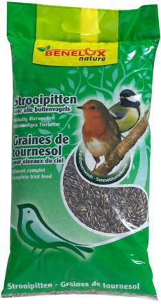 graine de tournesol oiseaux