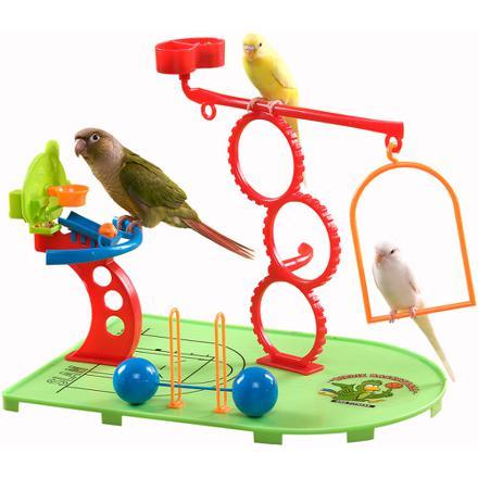 jouet pour perruche