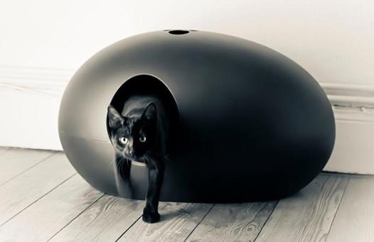 litiere chat originale