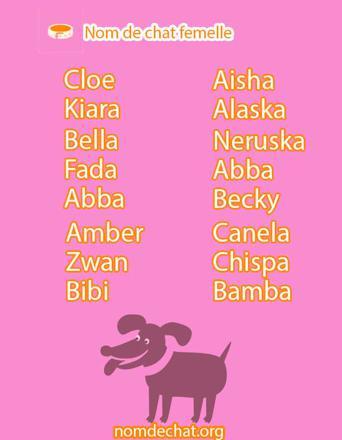 nom pour chat femelle