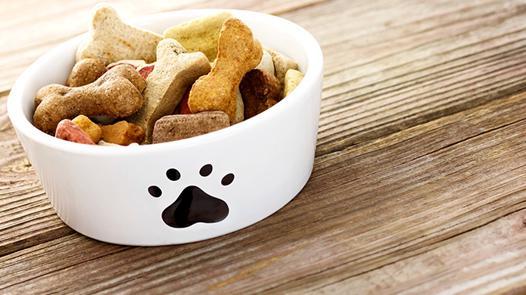 nourriture pour animaux