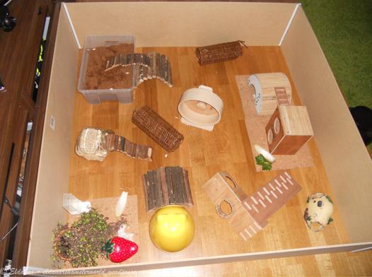 parc hamster