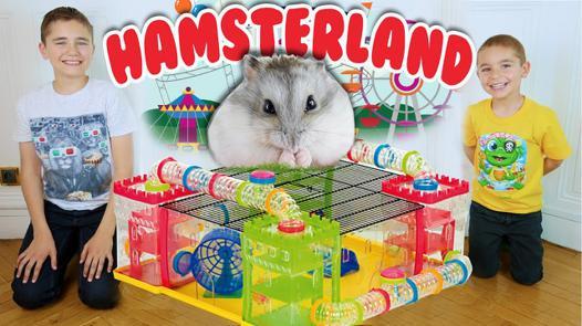 parc pour hamster