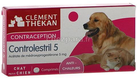 pilule contraceptive pour chien