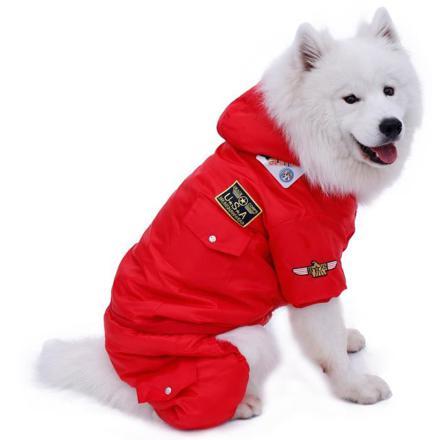 vetement pour chien